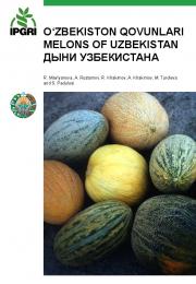 O'zbekiston qovunlari / Melons of Uzbekistan / Дыни Узбекистана