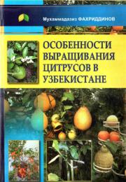 Особенности выращивания цитрусов в Узбекистане
